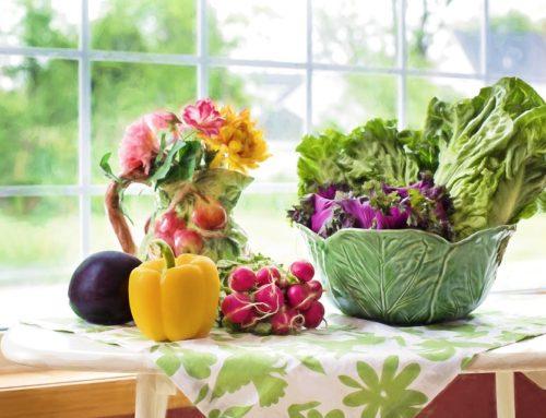 Pár slov o eko-logickém zemědělství